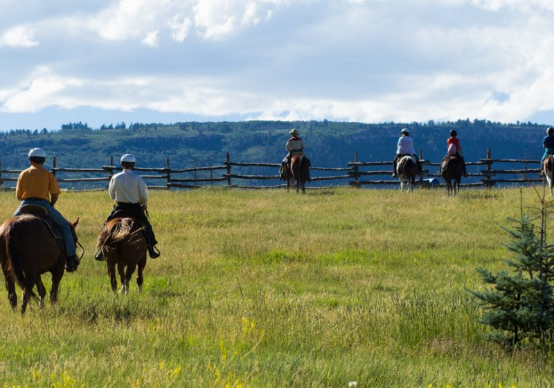 colorado horseback tours